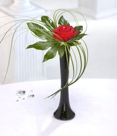 Single rose with unique greens makes a beautifully special gift