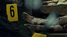 Outbreak or mass grave discovery
