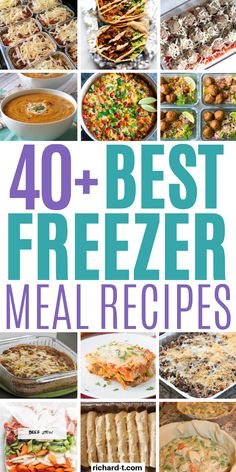 Easy Freezer Meals That'll Save You A Ton Of Time Looking for freezer meals? Then make sure to check out this list! These freezer meal recipes are the ULTIMATE list of recipes that you can make, freeze then cook later! Freezable Meals, Freezer Friendly Meals, Slow Cooker Freezer Meals, Healthy Freezer Meals, Dump Meals, Healthy Diet Recipes, Meal Recipes, Cooking Recipes, Freezer Cooking