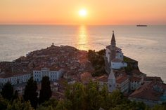 Piran's old town as seen from the highest point of the city, on one of the ancient walls.