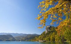 Google Doodle: What the Autumnal Equinox means and how you can make the most of it - Telegraph