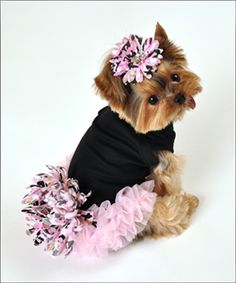 Luciana Dog Dress. This little dress is beautiful! So sweet on your fur baby! Available at http://doggyinwonderland.com/item_1818/Luciana-Dog-Dress.htm