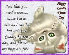 Free hugs from an adorable and cut kitten. Free online Cuddly Kitten Day - Free Hugs ecards on Cuddly Kitten Day Warm Hug, Warm And Cozy, Funny Cat Videos, Funny Cats, Romantic Messages, Miss You Cards, Free Hugs, Name Cards, Cat Gif