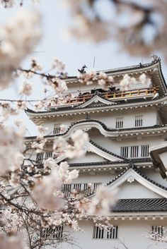 Cherry Blossom in front of Japanese Temple Wonderful Places, Beautiful Places, Beautiful Pictures, Japanese Temple, Japanese Art, Roses Tumblr, Asian Studies, Himeji Castle, Famous Places