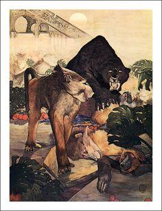 Jungle Book by Rudyard Kipling, illustrations M. & E. Detmold ~ London: Macmillan 1908.