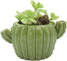 Cactus Flower Pot #ad #cactus #cactusmania #cacti