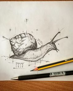 animal sketches Psdelux is a pencil sketch artist based in Tatabnya, Hungary. He usually draws animal sketches. For More Details View Website Animal Sketches, Art Drawings Sketches, Pencil Drawings, Sketch Drawing, Pencil Sketching, Snail Art, Arte Sketchbook, Sketch Design, Art Inspo