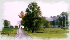 """The Amish Farm Road"" Photo Credit: John A. Kary New Wilmington, PA"