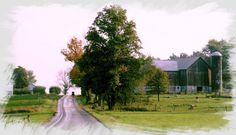 """The Amish Farm Road"" Photo Credit: John A. Kary New Wilmington, PA"