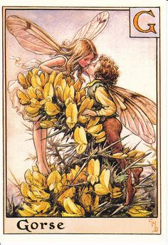 Gorse fairy by Cicely Mary Barker.