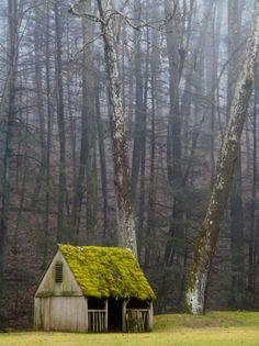 lanatura:  Mystical Valley (by greg kear2012)