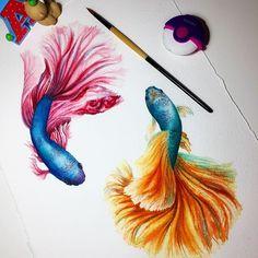 Ideas For Watercolor Art Fish Watercolour Watercolor Fish, Watercolor Animals, Watercolor Paintings, Fish Drawings, Animal Drawings, Art Drawings, Beta Fish Drawing, Dubai Art, Crayons Pastel