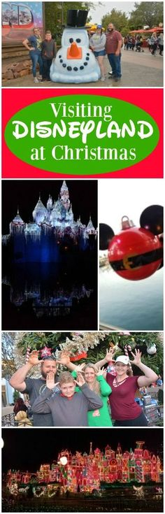 Check out everything you get to see at Disneyland… Disneyland Christmas, Disney Holidays, Disneyland Tips, Disneyland California, Christmas Travel, Christmas Holiday, Christmas Decor, Disney Ideas, Disney Tips