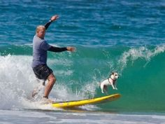 Doggy surfing!