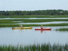 Kayak around Beaufort and the Sea Islands.