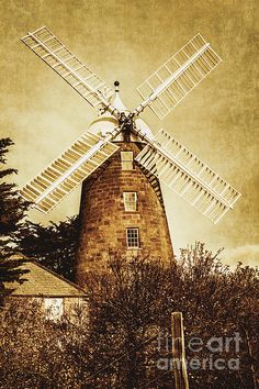 Magnificent vintage photograph with texture of the heritage listed Oatlands flour mill with white sails, built in 19th century Tasmania and still working. Australian tourist destinations by Ryan Jorgensen