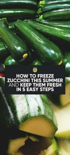 Abundant Zucchini harvest and not sure how to preserve it? Don't worry, here's the complete guide to how to freeze Zucchini, and a few easy recipes to boot. # Easy Recipes vegetables How to Freeze Zucchini and Keep Them Fresh in 5 Easy Steps Freezing Vegetables, Freezing Fruit, Frozen Vegetables, Freezing Broccoli, Zucchini Chips, Zuchinni And Squash Recipes, Yellow Zucchini Recipes, Vegan Zucchini Recipes, Mexican Zucchini