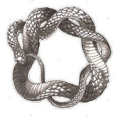 snake eating itself tattoo - Google Search