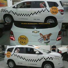 Um dos trabalhos que mais gostei de fazer! #lovedog #taxi #taxidog #GinoComunicaçãoVisual  #plotagem #veiculo #plottercarro