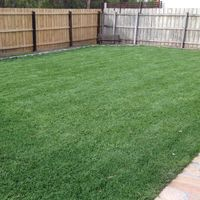 Our gallery of Sir Walter DNA Certified Buffalo Grass, other Instant Turf & Lawn varieties, Recent Projects, Residential and Commercial Instant Turf Projects. Instant Turf, Stepping Stones, Lawn, Grass, Outdoor Structures, Outdoor Decor, Projects, Log Projects, Stair Risers