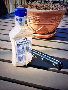 This salad dressing being stabbed by its friends: | 22 Things You'll Only Find Funny If You're A History Nerd