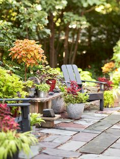 Settle In-Love this!  Would love to have a cozy patio space with a fire pit for eating, entertaining and having a glass of wine after a long day!  I love the container plants that spruce up the patio and make it warm and inviting.  Cozy chairs are a must!