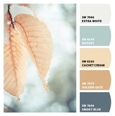 Paint colors from Chip It! by Sherwin-Williams, smokey blue body, extra white trim, black accent, brown trim