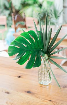 Vintage Backyard Baby Shower Vintage Backyard Baby Shower - Inspired by This Tropical Bridal Showers, Tropical Party, Tropical Decor, Tropical Flowers, Tropical Furniture, Tropical Leaves, Tropical Centerpieces, Baby Shower Centerpieces, Wedding Centerpieces