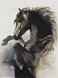 """Black Fury"" by Sara Moon by sara-moon-art"