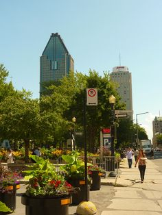 Montreal Downtown  By D. Caro. samincanada blog