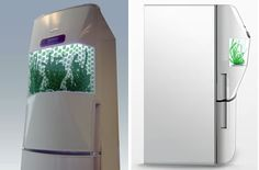 Designer Hanna Sandström worked with Green Fortune & Whirlpool to come up with a refrigerator that will nurture a seed into a plant. It's meant to grow herbs and organic greens that you might normally purchase.