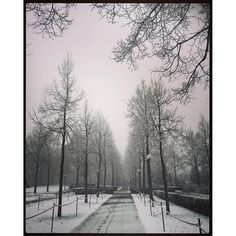 ... And then white day. Beautiful too. ... Y después día blanco. Bello también.  www.Jessicajlockhart.com #optimismcoaching #coachingenoptimismo #humanología #jessicajlockhart #humanology