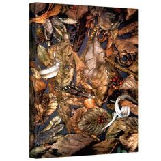 ArtWall George Zucconi Autumn Sonata Wrapped Canvas, Size: 18 x 24, Red
