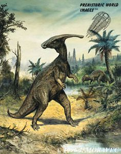 Parasaurolophus, a crested hadrosaur. Probably the loudest dinosaur and it was a vegetarian :)