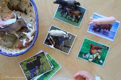 6 Montessori Zuordnungsspiel-Ideen mit Karten zum Downloaden | Eltern vom Mars | Bloglovin'