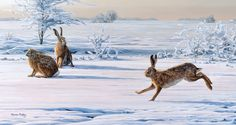 'The Interloper' by Martin Ridley from the Countryside Alliance Christmas Card Collection 2011. To purchase cards from our 2016 Collection follow this link: http://www.countryside-alliance.org/shop-countryside/?swoof=1&product_cat=christmas-cards&page=1