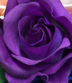 Purple Love, All Things Purple, Shades Of Purple, Purple Flowers, Pretty In Pink, Pink Purple, She Was Beautiful, Beautiful Roses, Miss U Mom