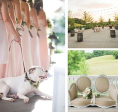 Long blush bridesmaid dresses and dog at wedding! See more from this romantic Chattanooga wedding inspiration with a Southern theme and blush details captured by @daisymphoto! | The Pink Bride® www.thepinkbride.com