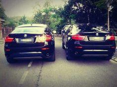 Twins life