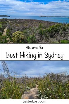 The Ultimate Guide to the Best Hikes in Sydney | LesterLost Hiking Places, Hiking Trails, Western Australia, Australia Travel, Solo Travel, Travel Tips, Great Walks, Best Hikes, Tasmania