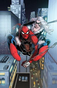 Spiderman and Black Cat by papillonstudio