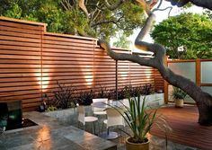 Die Klassik der modernen Gartengestaltung: Holzzaun