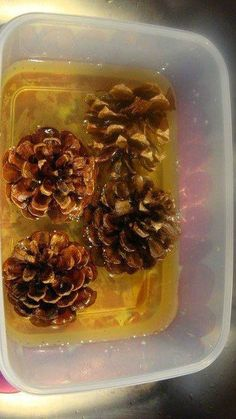 Need white pine cones for a craft project? Turn fall pine cones into amazing pine cone crafts. After you bleach pine cones, you can paint them, add glitter, or leave them white. Fall Crafts, Holiday Crafts, Diy And Crafts, Christmas Crafts, Crafts For Kids, Arts And Crafts, Xmas, Decor Crafts, Holiday Ideas