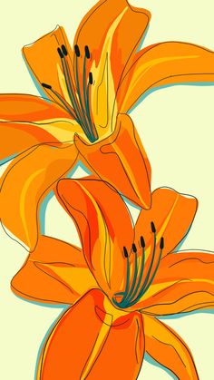 my may flowers a daily drawing challenge daylilies orange summertime illustration ipad pro # Orange Wallpaper, Iphone Background Wallpaper, Tumblr Wallpaper, Aesthetic Iphone Wallpaper, Phone Backgrounds, Ipad Background, Pretty Backgrounds, Summer Backgrounds, Orange Background