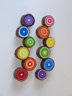 Painted Tree Rings Rainbow Set of 12 Reclaimed Wood Beautiful Dimensional Wall Art Eco Friendly