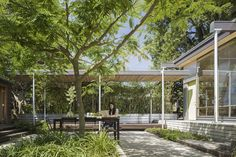 Grasshopper Studio courtyard landscape