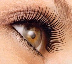 How to make your real lashes look false:  1. Line the root of your eyelashes with eyeliner  2. Curl your eyelashes  3. Use a brush to dust your eyelashes with translucent powder  3. Put on mascara    Adding translucent powder to your eyelashes before mascara makes them look thicker and longer! WOW!