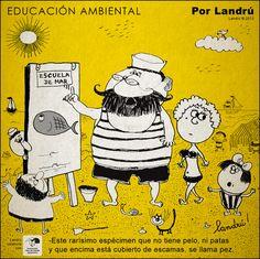 Chiste EDUCACIÓN AMBIENTAL -Este rarísimo espécimen que no tiene pelo, ni patas y que encima está cubierto de escamas, se llama pez. Humor por Landrú para Fundación Vida Silvestre Argentina. (2013)