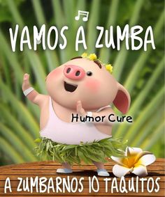 Funny Spanish Memes, Spanish Humor, Funny Images, Funny Pictures, Spanish Prayers, Pig Illustration, Funny Emoji, Cute Pigs, Little Pigs