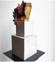 Sat cake inspo